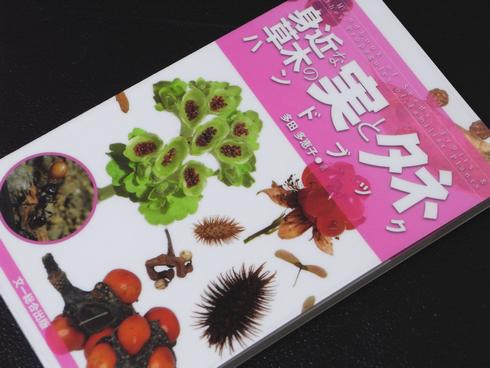 へたれ山ヤの漢気日記:参考書№257 身近な草木の実とタネハンドブック