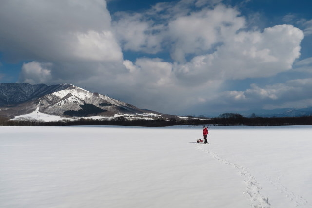 ランとふぅ スノーハイク蒜山三木ヶ原