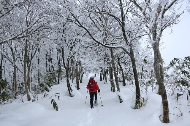 雪の富栄山