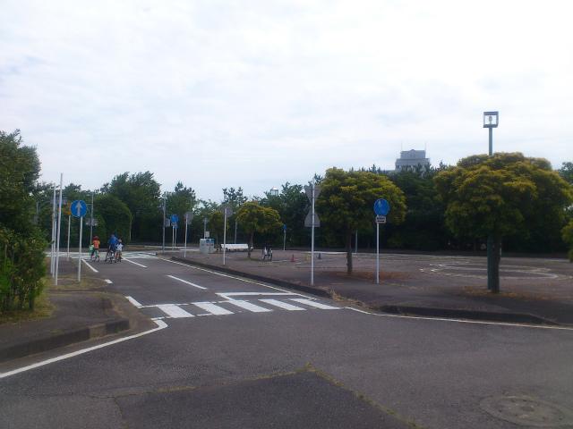 ... 公園 (ひたち海浜公園のすぐ