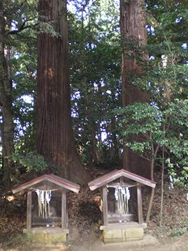 麻賀多神社(成田市台方) 麻賀多神社は日月神示で有名な岡本天明が、麻賀多神社の末社である天之日津