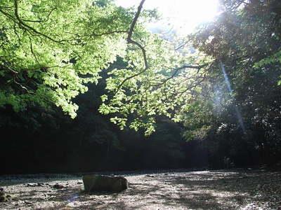 大阪府 光滝寺キャンプ場 の写真g22129